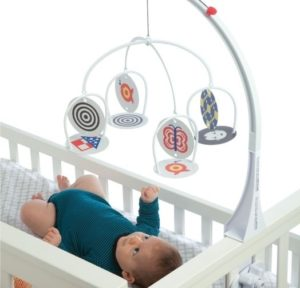 This is an image of baby toy wimmer