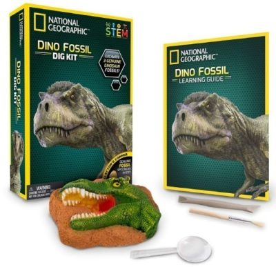 This is an image of boy's national geographic dinosaur kit